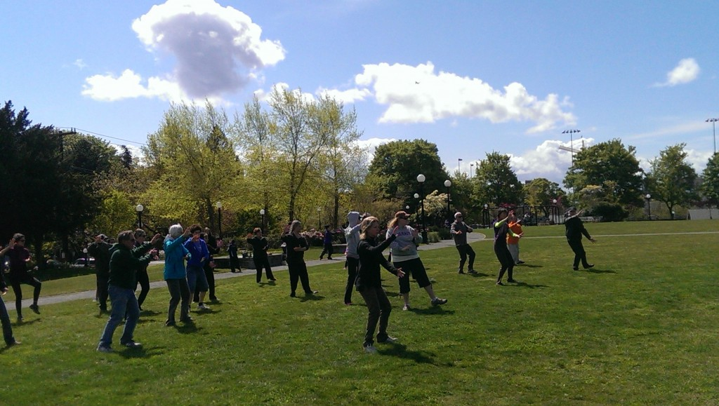 Tai Chi Play at Cal Anderson Park