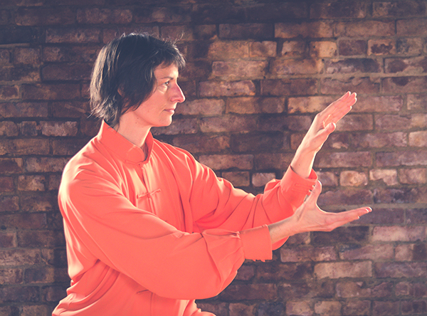 Spiral Qigong Special Session @ Wise Orchid Taijiquan & Qigong