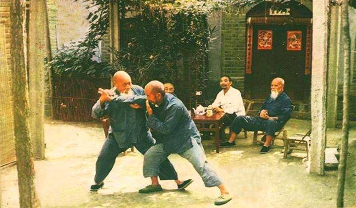 Push Hands Practice @ Wise Orchid Taijiquan & Qigong